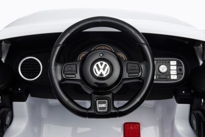 redealer kever electrische auto