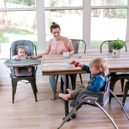 Ingenuity babystoel 4 in 1 redealer