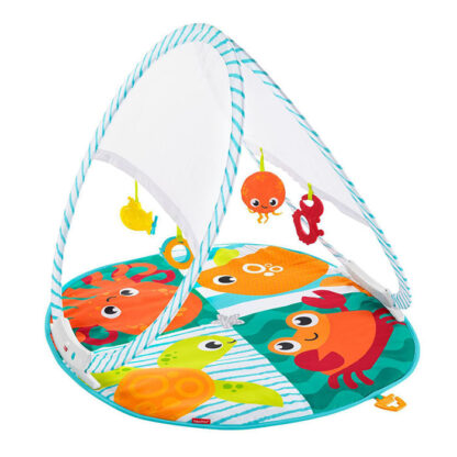 babyreisgym fisher price redealer