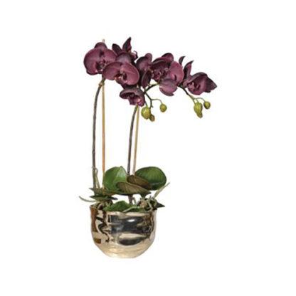 kunst orchidee in gouden vaas redealer