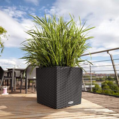 lechuza plantenbak redealer
